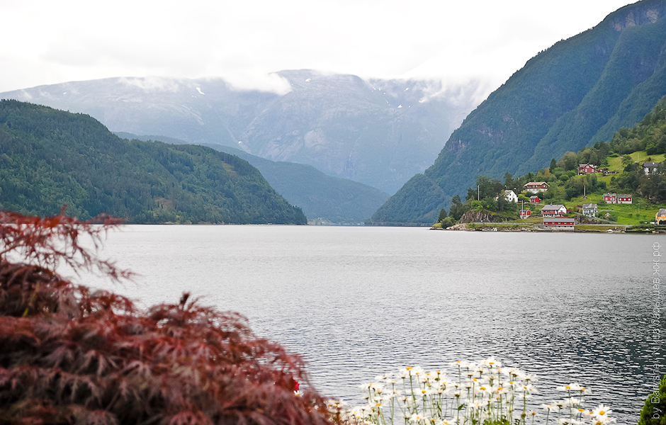 Travelme_fjords_of_norway_foto_by_nikita_baryshev__28_