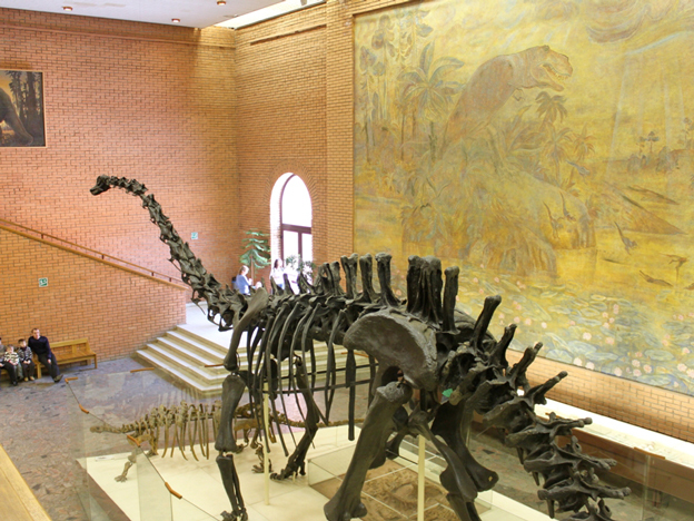 Travelme_russia_moscow_museum-of-paleontology_foto-by-anatoliy-selyaninov-_12_