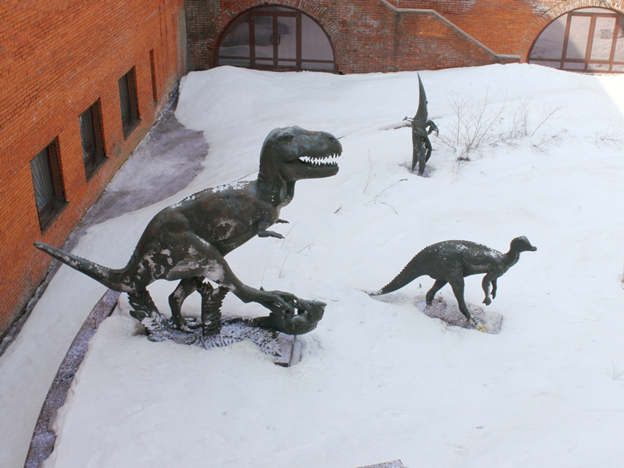 Travelme_russia_moscow_museum-of-paleontology_foto-by-anatoliy-selyaninov-_10_